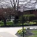 2010 Daffodil Planting