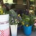 2016 HGC Flower Arrangements
